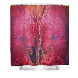 Portal To Shambala Shower Curtain