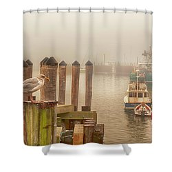 Portland Harbor Morning Shower Curtain