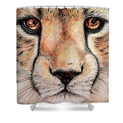 Portrait Of A Cheetah Shower Curtain