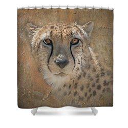 Portrait Of A Cheetah Shower Curtain