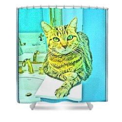 Portrait Of A Feline Shower Curtain