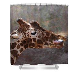 Portrait Of A Giraffe Shower Curtain by Ernie Echols
