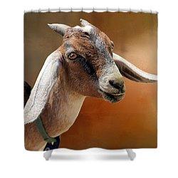 Portrait Of A Goat Shower Curtain