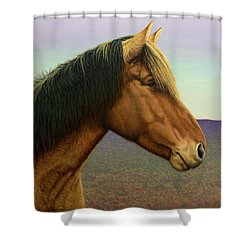 Portrait Of A Horse Shower Curtain by James W Johnson