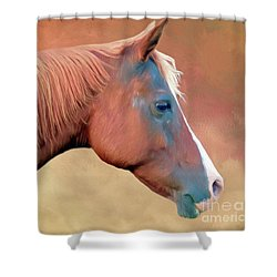 Portrait Of A Horse Shower Curtain by Marion Johnson