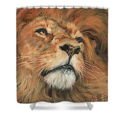 Shower Curtain featuring the painting Portrait Of A Lion by David Stribbling