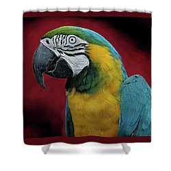 Shower Curtain featuring the photograph Portrait Of A Parrot by Jeff Burgess
