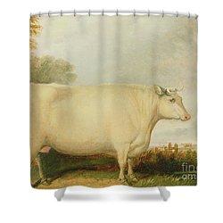 Portrait Of A Prize Cow Shower Curtain by John Vine