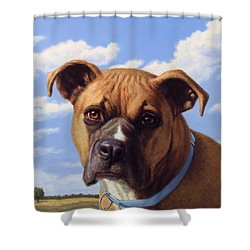 Shower Curtain featuring the painting Portrait Of A Sweet Boxer by James W Johnson