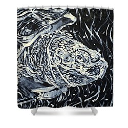 Shower Curtain featuring the painting Portrait Of A Turtle by Fabrizio Cassetta