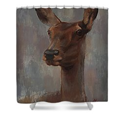 Portrait Of A Young Doe Shower Curtain