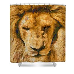 Shower Curtain featuring the photograph Portrait Of Lion by Scott Carruthers