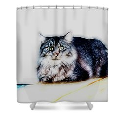 Portrait Of Maine Coon, Mattie Shower Curtain