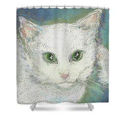 Shower Curtain featuring the drawing Portrait Of Misty by Denise Fulmer