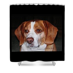 Portrait Of Rusty Shower Curtain