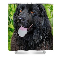 Portrait Of Sierra Shower Curtain