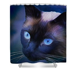Portrait Of Sulley Shower Curtain