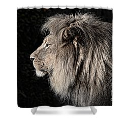 Portrait Of The King Of The Jungle II Shower Curtain by Jim Fitzpatrick