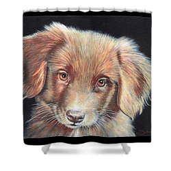 Portrait Of Toby Shower Curtain