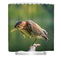 Posing Heron Shower Curtain by Jerry Cahill