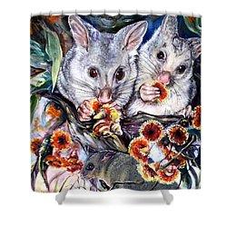 Possum Family Shower Curtain