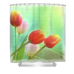 Postcards From The Edge Shower Curtain