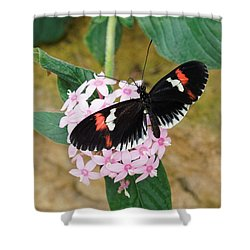 Shower Curtain featuring the photograph Postman Butterfly, Heliconius Melpomene by Paul Gulliver