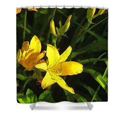 Pot Luck Shower Curtain by Tom Prendergast