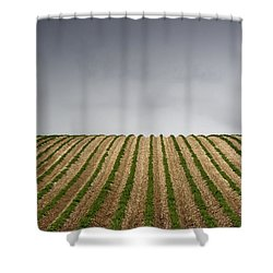 Potato Field Shower Curtain by John Short
