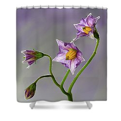 Potato Flowers Shower Curtain