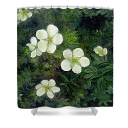 Potentilla Shower Curtain
