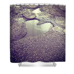 Pothole Love Shower Curtain