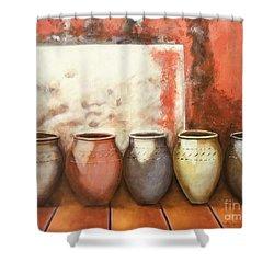 Pots In The Sun Shower Curtain