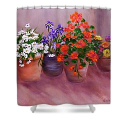 Pots Of Flowers Shower Curtain