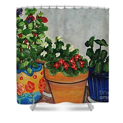 Pots Showing Off Shower Curtain