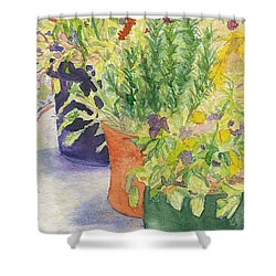 Shower Curtain featuring the painting Potted Beauties  by Vicki  Housel