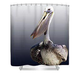 Pouches Shower Curtain by Skip Willits