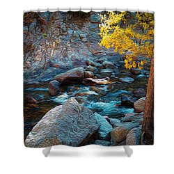Poudre Dream Shower Curtain
