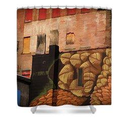 Poughkeepsie Street Art Shower Curtain