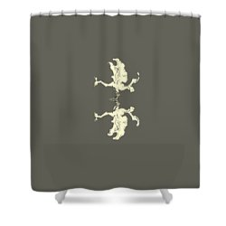 Poulia Shower Curtain