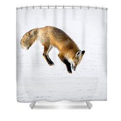 Pounce Shower Curtain by Jack Bell