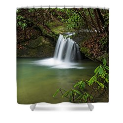 Pounder Branch Falls # 2 Shower Curtain