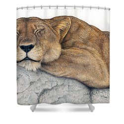 Power And Grace At Rest Shower Curtain by Pat Erickson