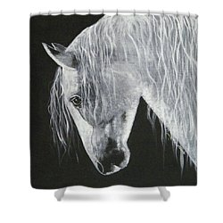 Power Horse Shower Curtain