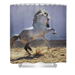 Power In Motion Shower Curtain