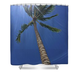 Powerful Palm Shower Curtain