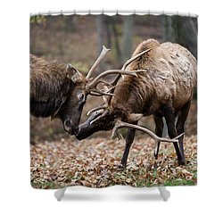 Shower Curtain featuring the photograph Practicing by Andrea Silies