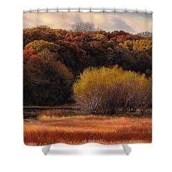 Prairie Autumn Stream Shower Curtain by Bruce Morrison