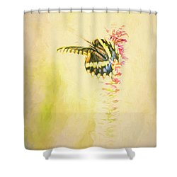Prairie Butterfly 3 Shower Curtain