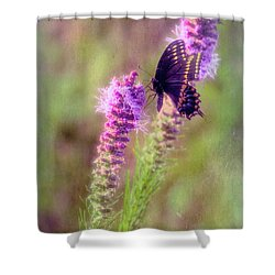 Prairie Butterfly Shower Curtain